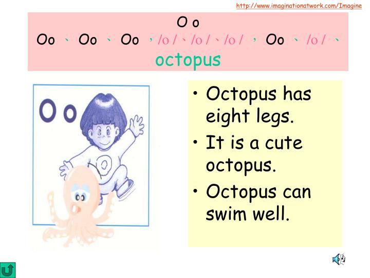 Octopus has eight legs.