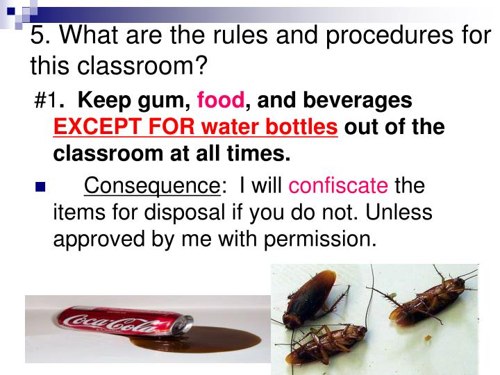 5. What are the rules and procedures for this classroom?