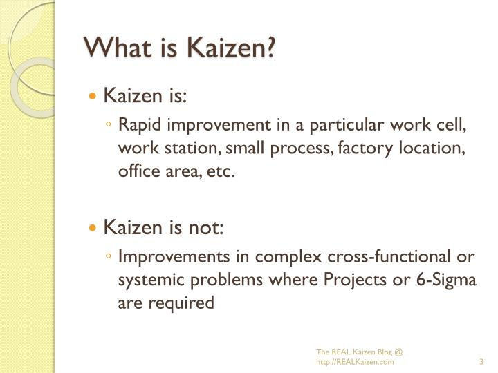 What is kaizen1