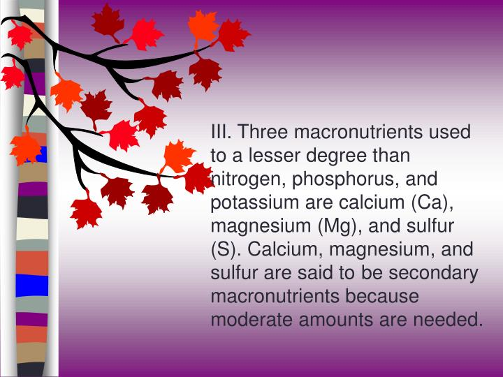 III. Three macronutrients used to a lesser degree than nitrogen, phosphorus, and potassium are calcium (Ca), magnesium (Mg), and sulfur (S). Calcium, magnesium, and sulfur are said to be secondary macronutrients because moderate amounts are needed.
