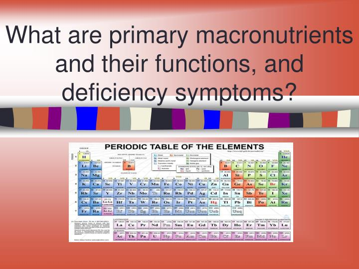 What are primary macronutrients and their functions, and deficiency symptoms?