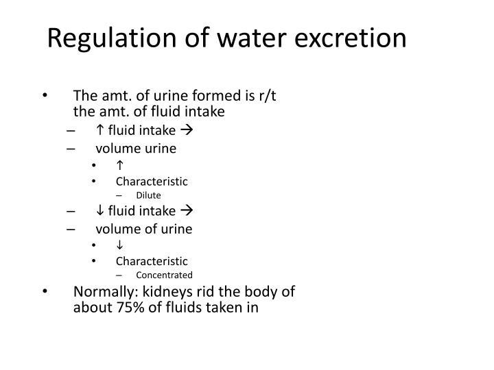 Regulation of water excretion