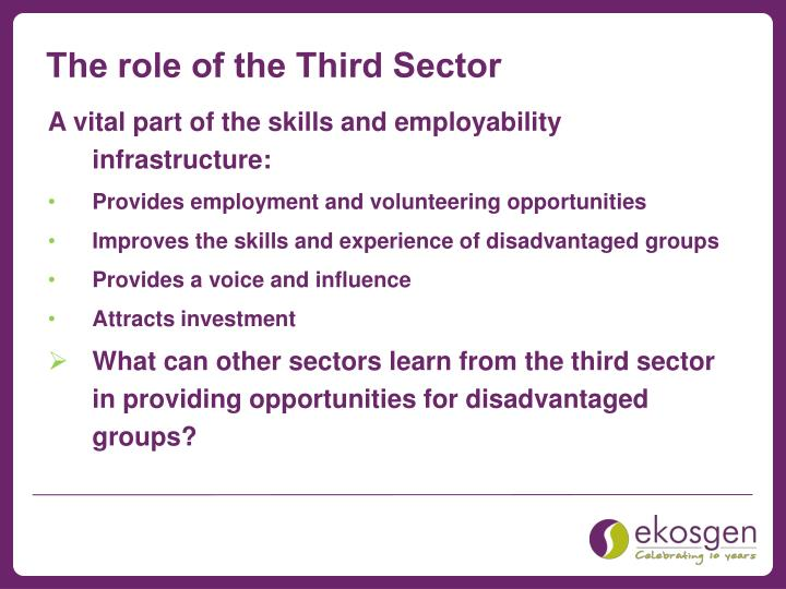The role of the Third Sector