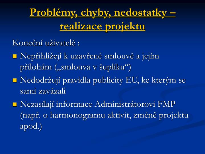 Problémy, chyby, nedostatky – realizace projektu