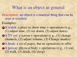 what is an object in general