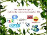 the internet jungle for multimedia communications after ims