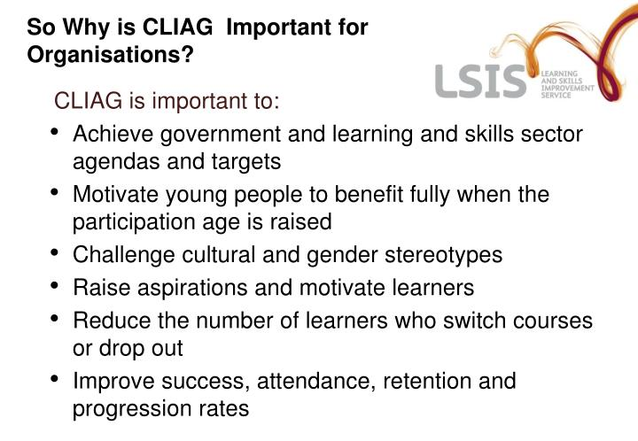 So Why is CLIAG  Important for Organisations?
