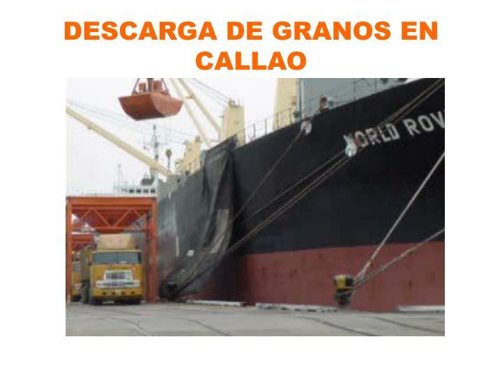 DESCARGA DE GRANOS EN CALLAO
