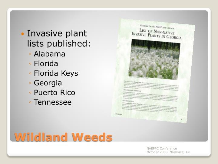 Invasive plant lists published: