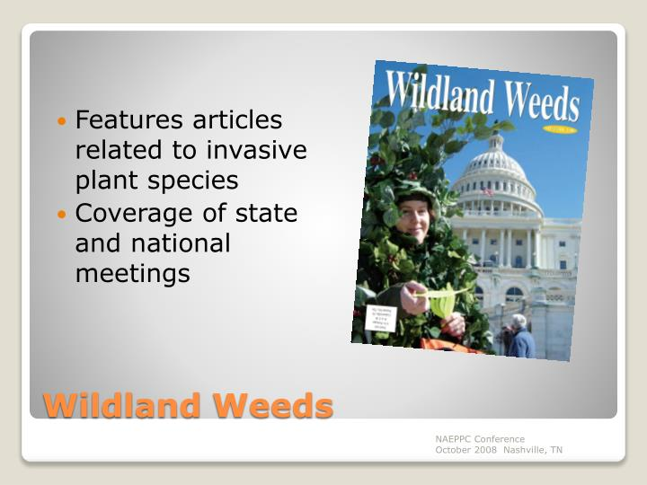 Features articles related to invasive plant species