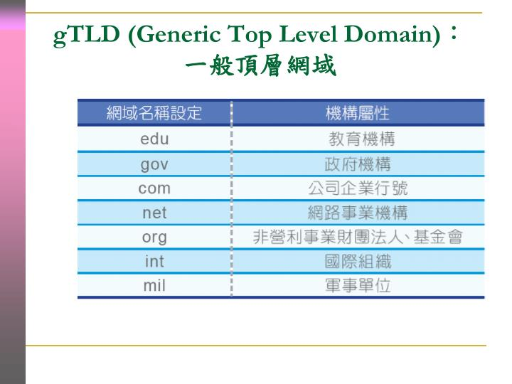 gTLD (Generic Top Level Domain)