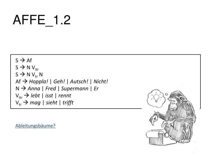 AFFE_1.2