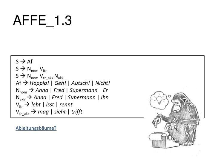 AFFE_1.3