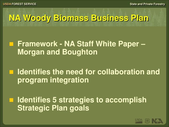 biomass business plan