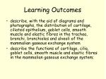 learning outcomes4