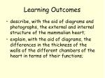 learning outcomes8
