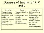 summary of function of a v and c