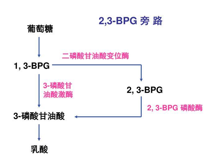 2,3-BPG