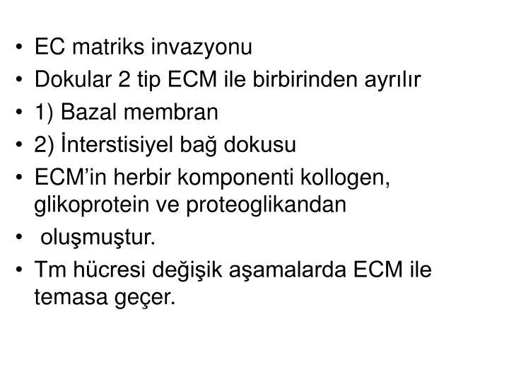 EC matriks invazyonu