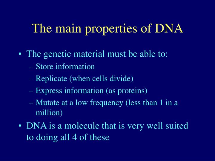 the main properties of dna