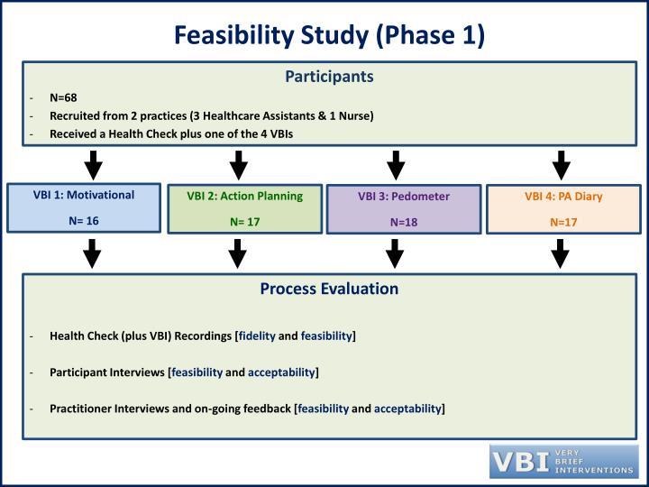 Feasibility Study (Phase 1)