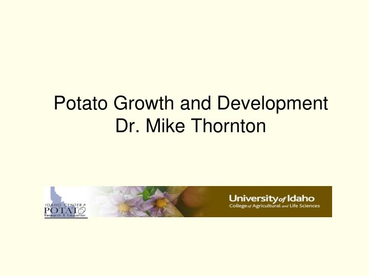 potato growth and development dr mike thornton n.