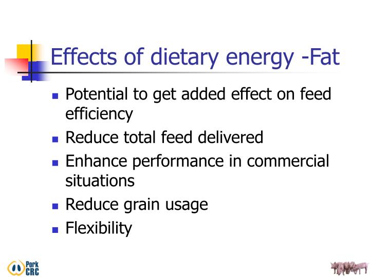 Effects of dietary energy -Fat