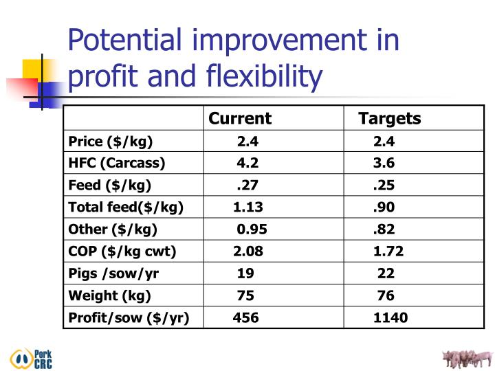 Potential improvement in profit and flexibility