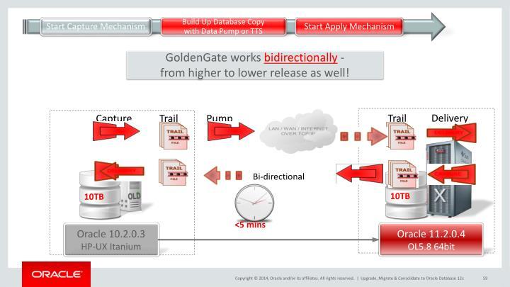 GoldenGate works