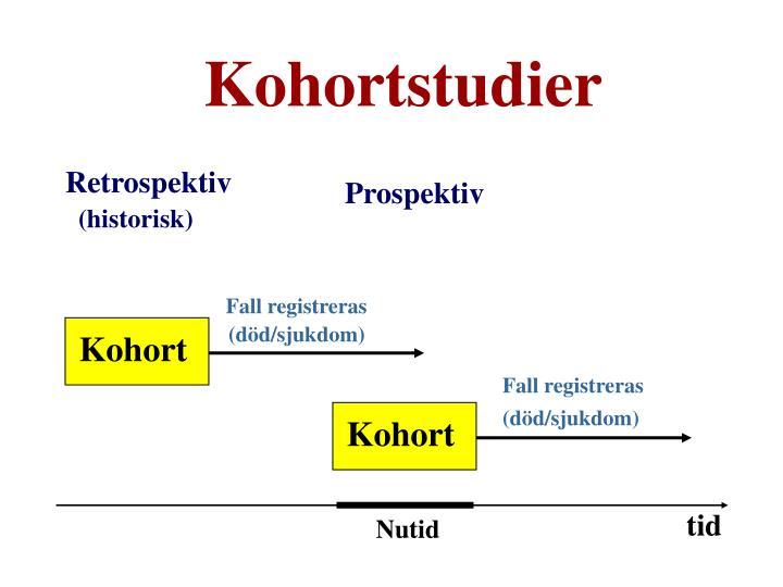 Kohortstudier