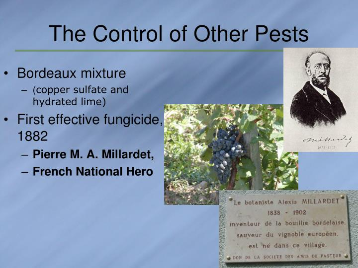 The Control of Other Pests