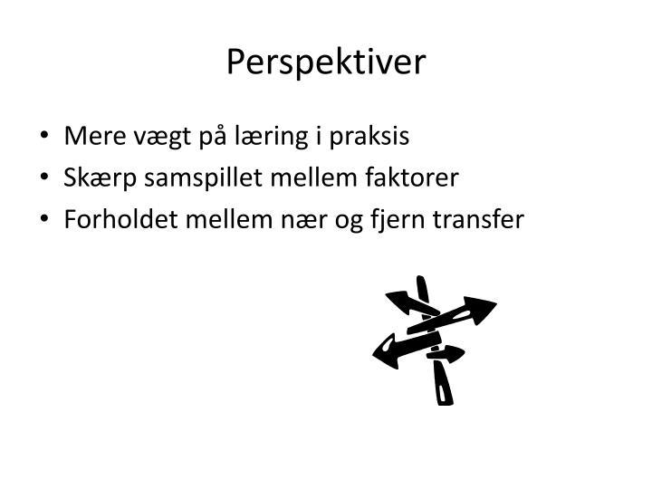 Perspektiver