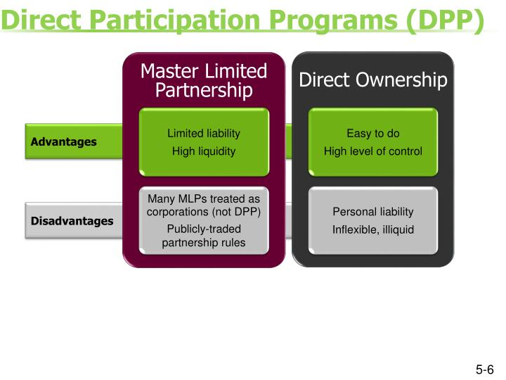 Direct Participation Programs (DPP)