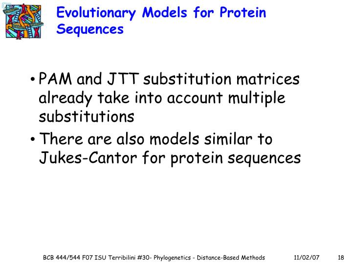 Evolutionary Models for Protein Sequences