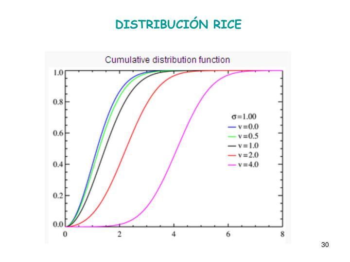 DISTRIBUCIÓN RICE