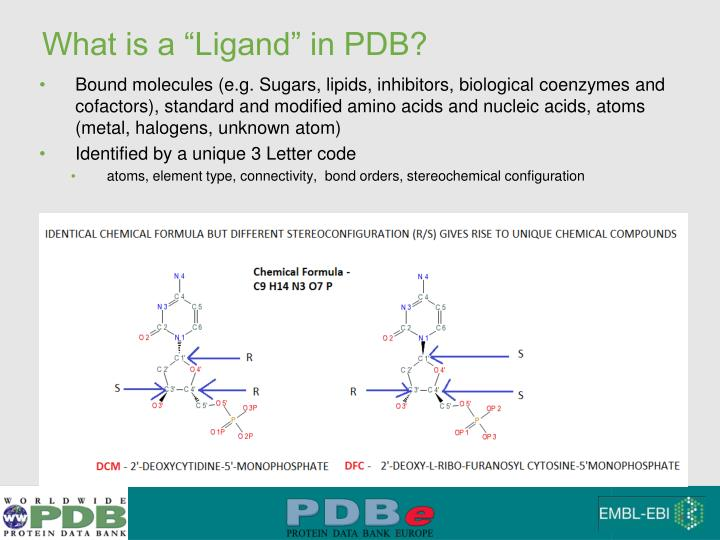 What is a ligand in pdb