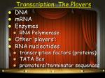 transcription the players
