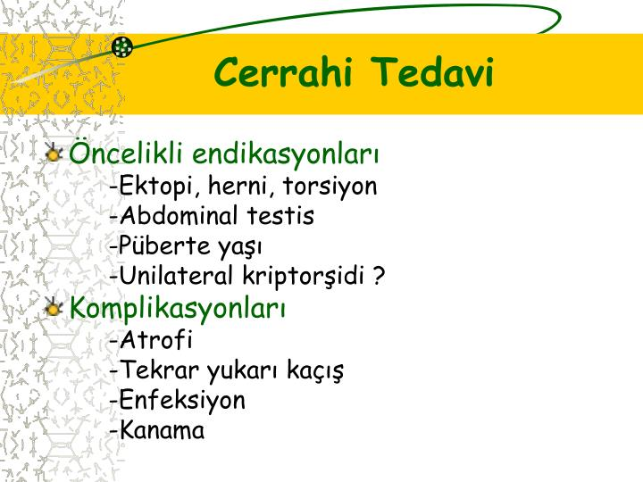 Cerrahi Tedavi