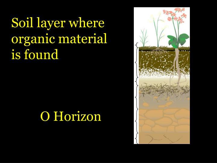 Soil layer where