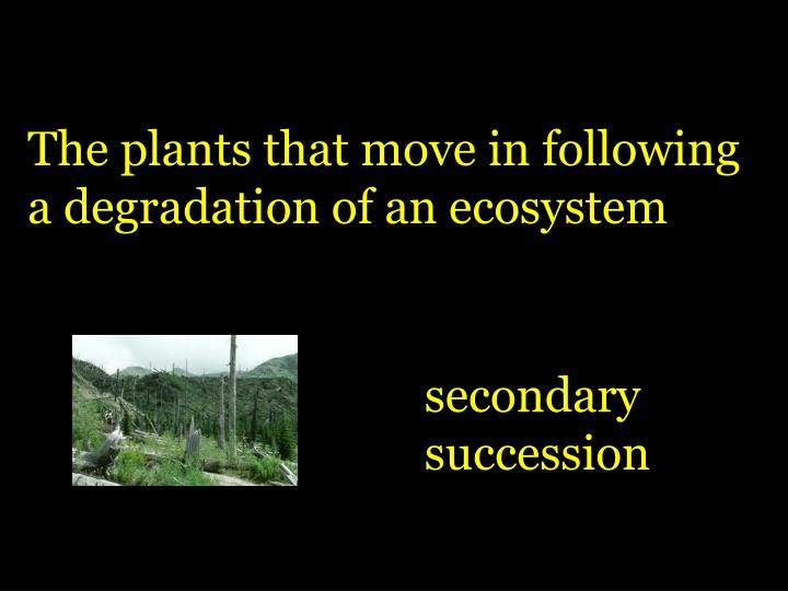 The plants that move in following