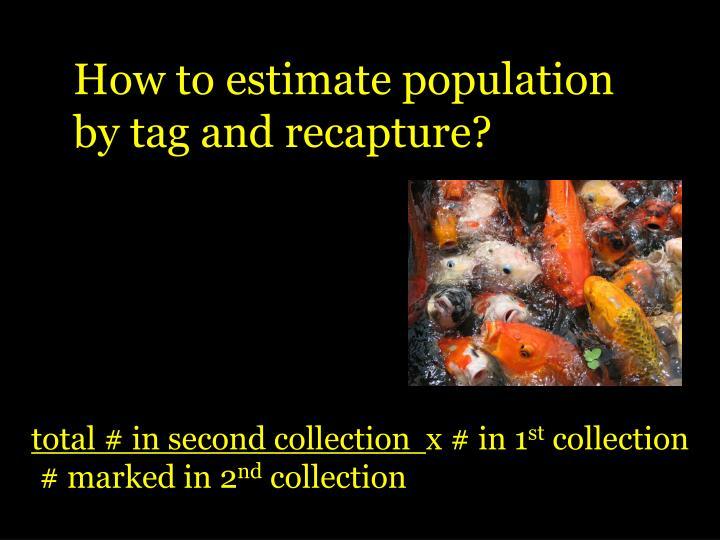 How to estimate population