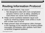 routing information protocol1