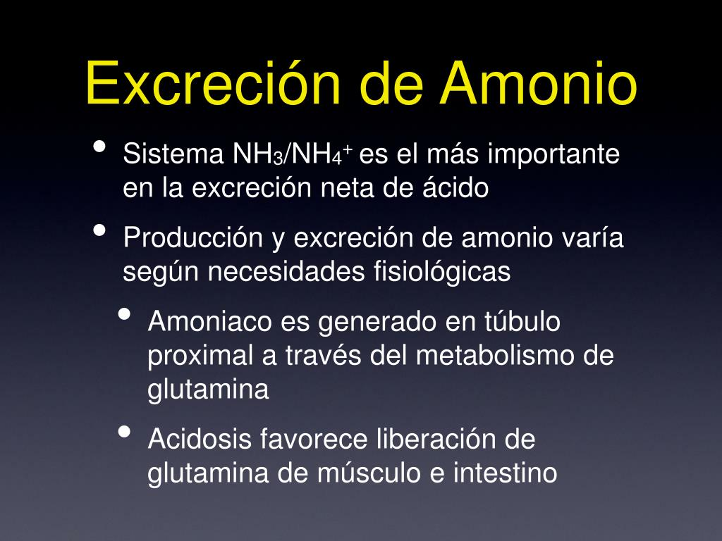 Cómo Acelerar Eⅼ Metabolismo