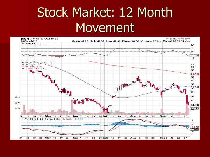 Stock Market: 12 Month Movement