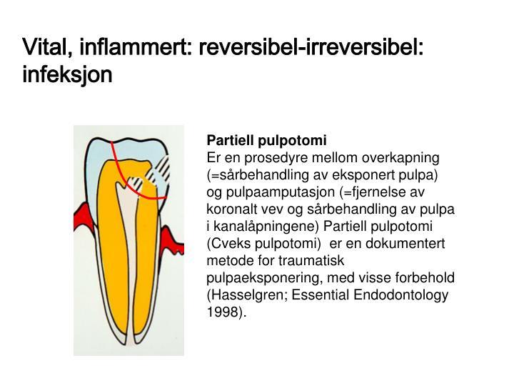 Vital, inflammert: reversibel-irreversibel: infeksjon
