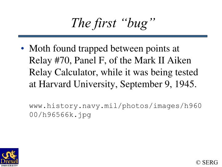 The first bug1