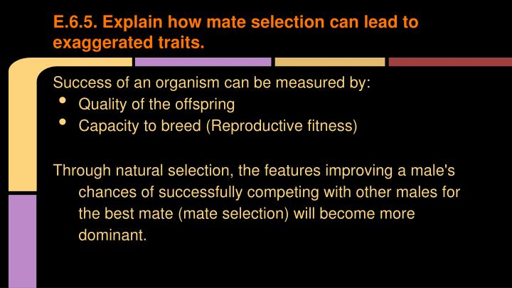 E.6.5. Explain how mate selection can lead to exaggerated traits.