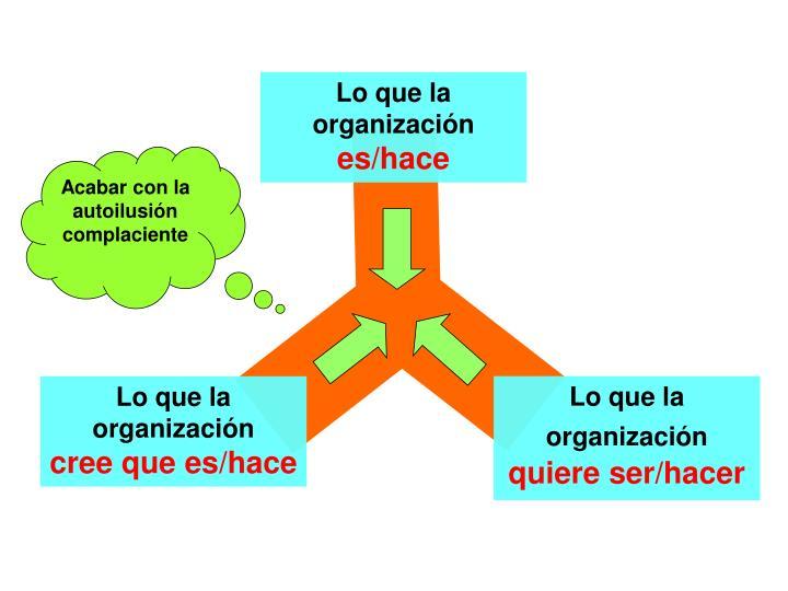 Lo que la organización