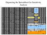 organizing the spreadsheet for sensitivity analysis