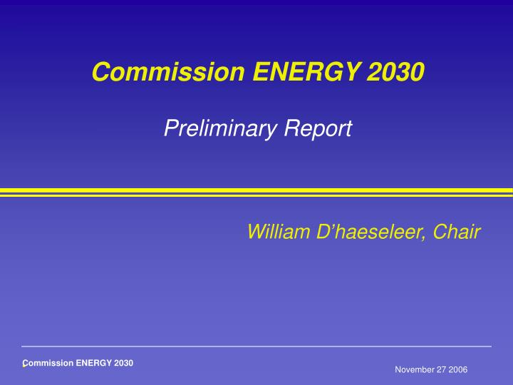 commission energy 2030 preliminary report n.